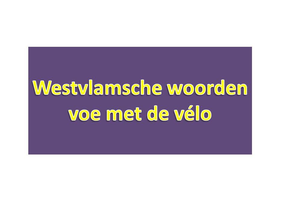 Westvlamsche woorden voe met de vélo