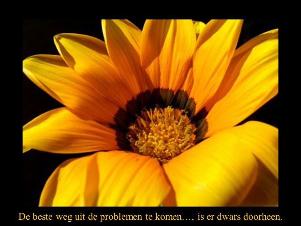 De beste weg uit de problemen te komen…, is er dwars doorheen.