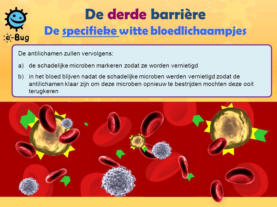 De derde barrière De specifieke witte bloedlichaampjes