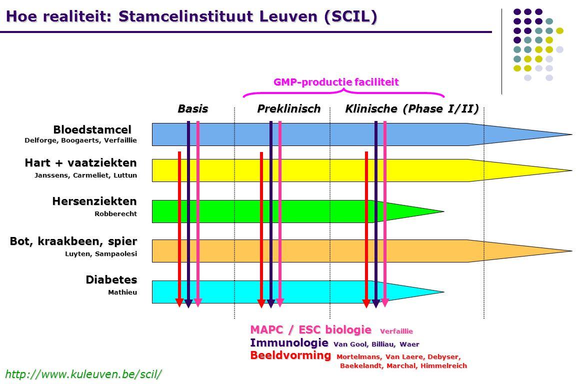 Hoe realiteit: Stamcelinstituut Leuven (SCIL)