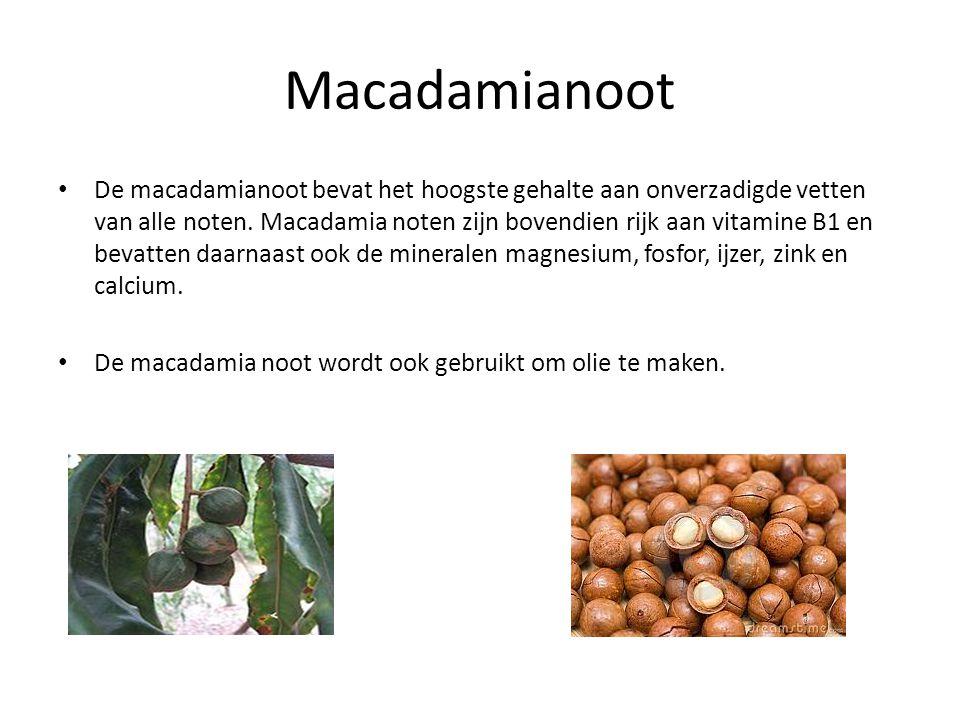 Macadamianoot