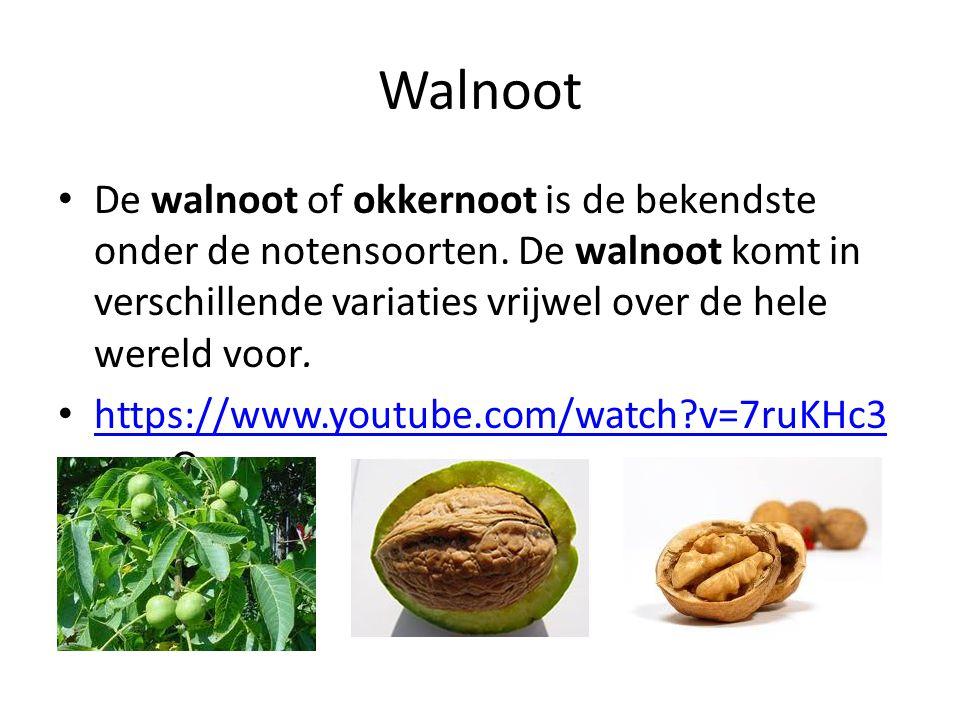Walnoot De walnoot of okkernoot is de bekendste onder de notensoorten. De walnoot komt in verschillende variaties vrijwel over de hele wereld voor.
