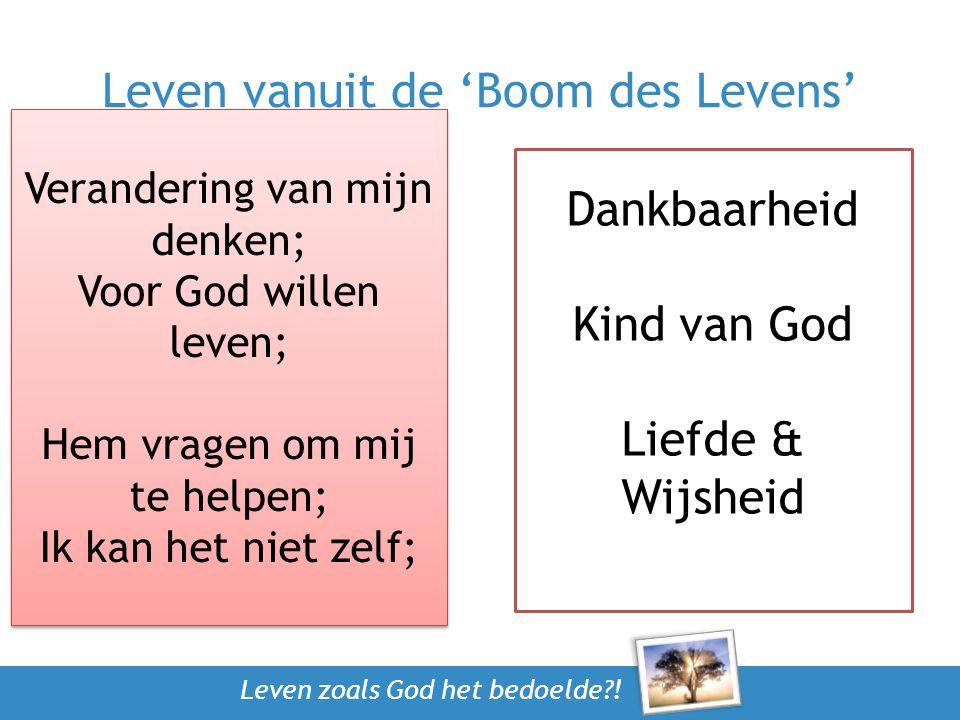 Leven vanuit de 'Boom des Levens'