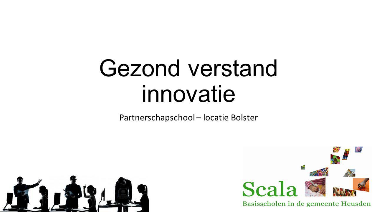 Gezond verstand innovatie
