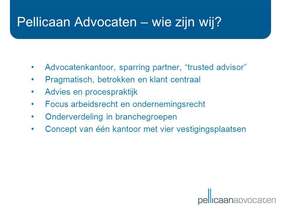Pellicaan Advocaten – wie zijn wij