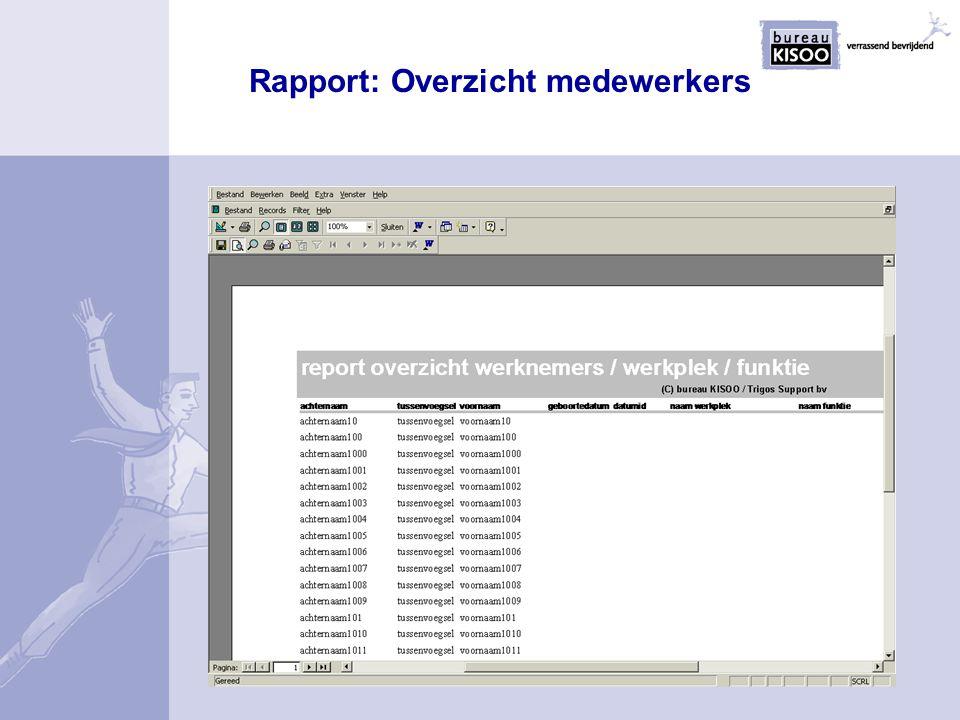 Rapport: Overzicht medewerkers