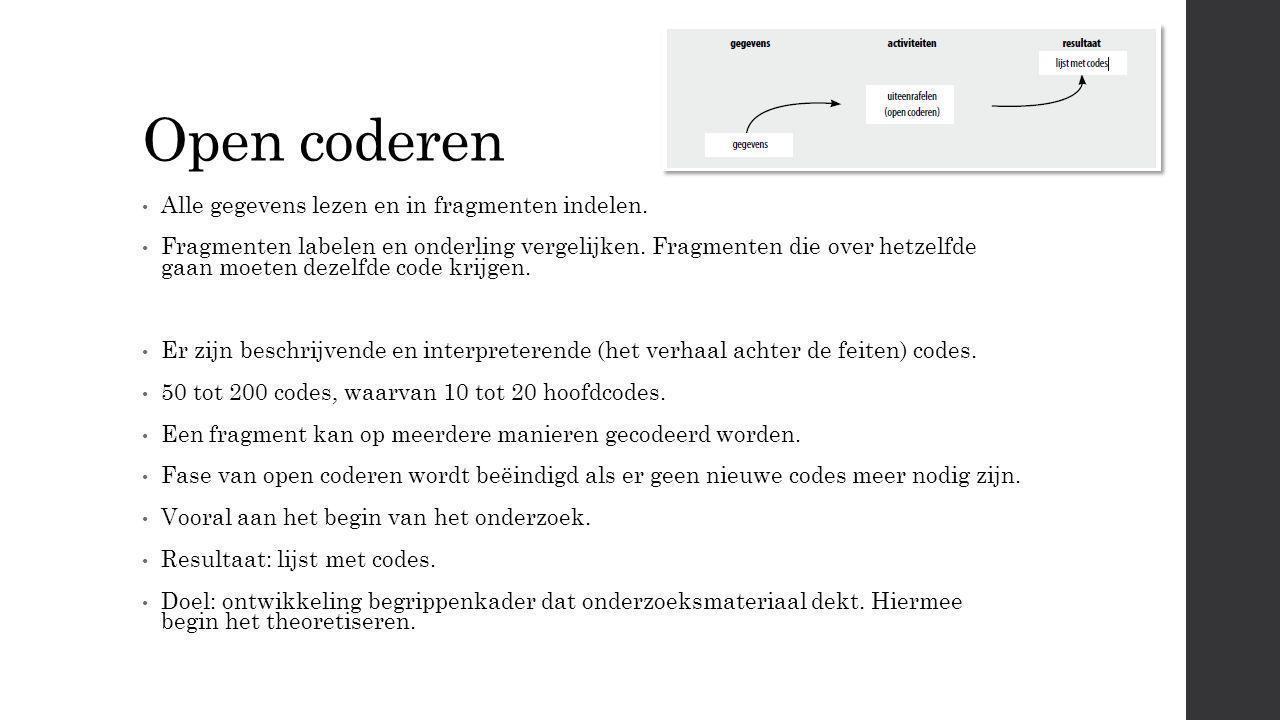 Open coderen Alle gegevens lezen en in fragmenten indelen.