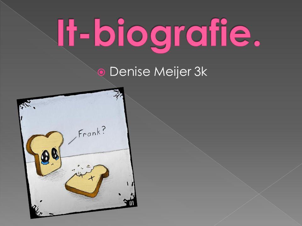 It-biografie. Denise Meijer 3k