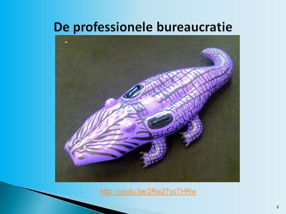 De professionele bureaucratie