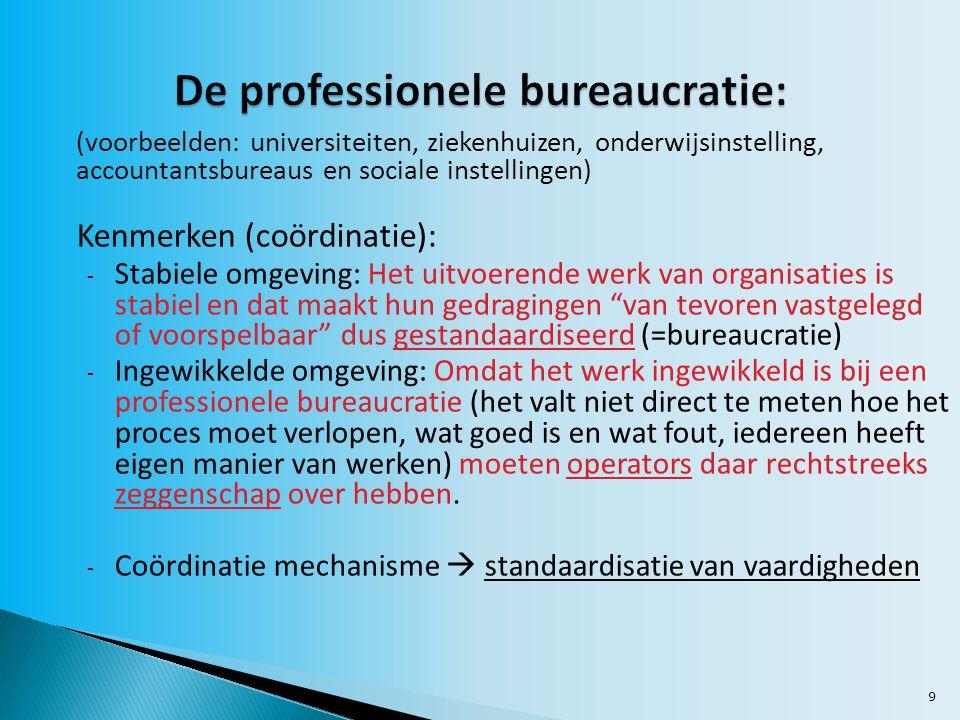 De professionele bureaucratie: