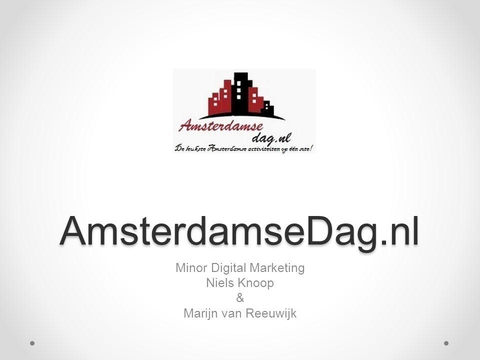Minor Digital Marketing Niels Knoop & Marijn van Reeuwijk