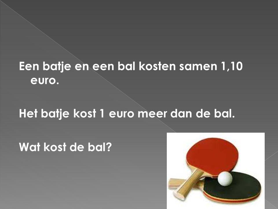 Een batje en een bal kosten samen 1,10 euro
