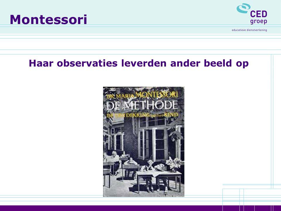 Montessori Haar observaties leverden ander beeld op
