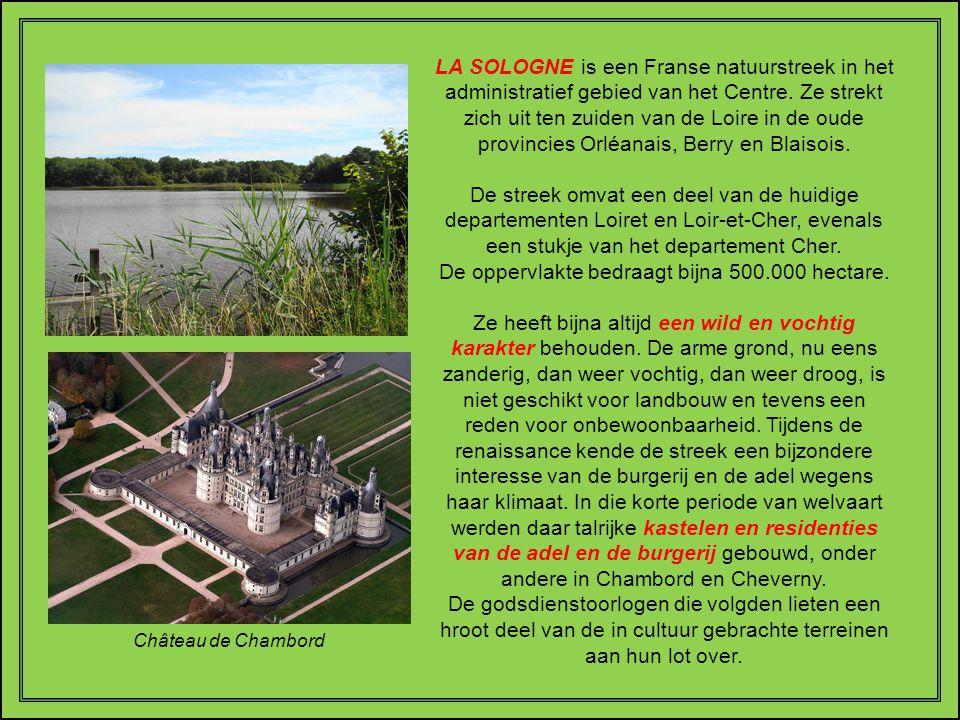 LA SOLOGNE is een Franse natuurstreek in het administratief gebied van het Centre. Ze strekt zich uit ten zuiden van de Loire in de oude provincies Orléanais, Berry en Blaisois.