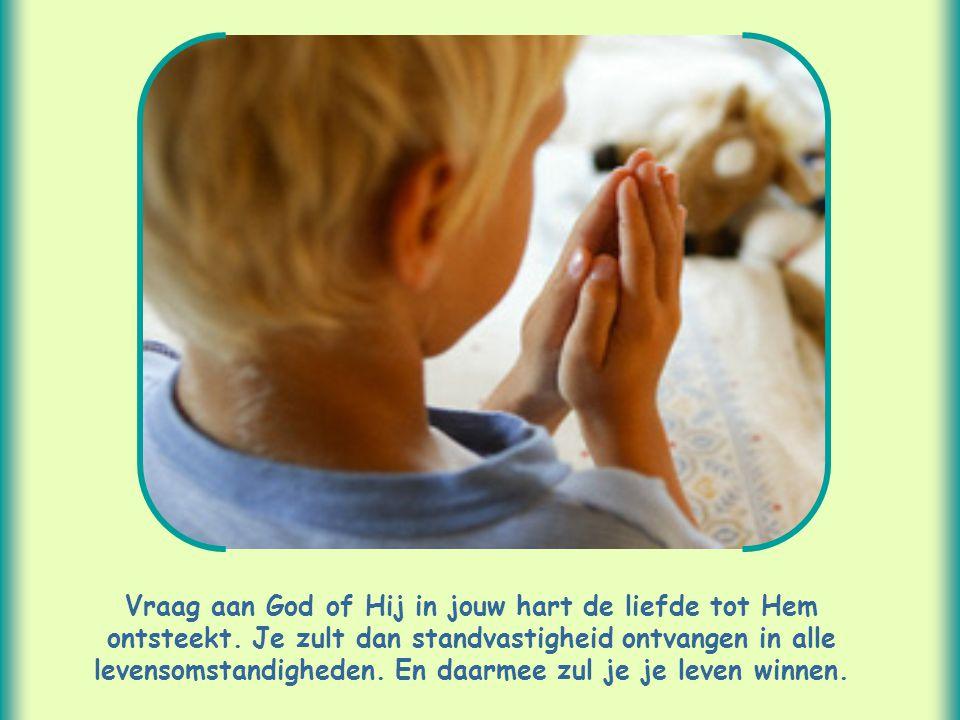 Vraag aan God of Hij in jouw hart de liefde tot Hem ontsteekt