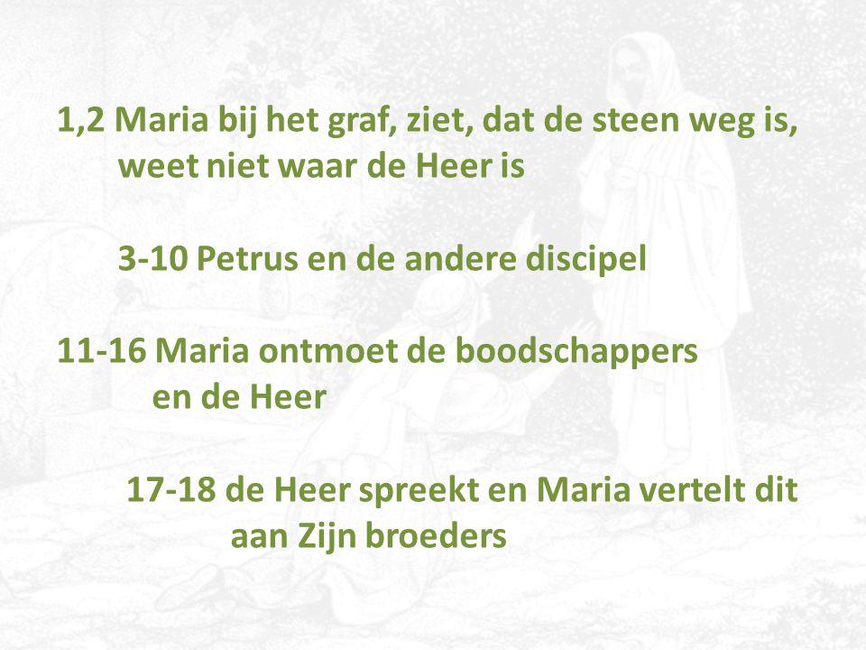 1,2 Maria bij het graf, ziet, dat de steen weg is, weet niet waar de Heer is 3-10 Petrus en de andere discipel 11-16 Maria ontmoet de boodschappers en de Heer 17-18 de Heer spreekt en Maria vertelt dit aan Zijn broeders