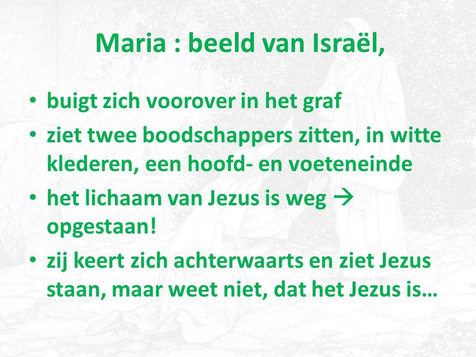 Maria : beeld van Israël,