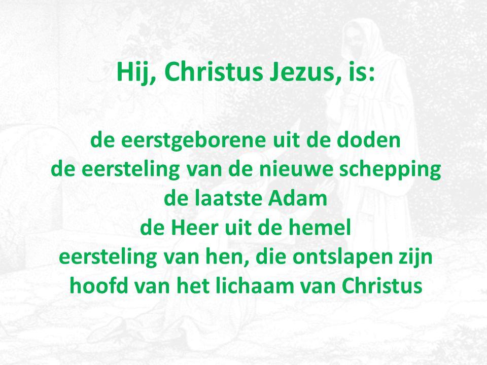 Hij, Christus Jezus, is: de eerstgeborene uit de doden de eersteling van de nieuwe schepping de laatste Adam de Heer uit de hemel eersteling van hen, die ontslapen zijn hoofd van het lichaam van Christus