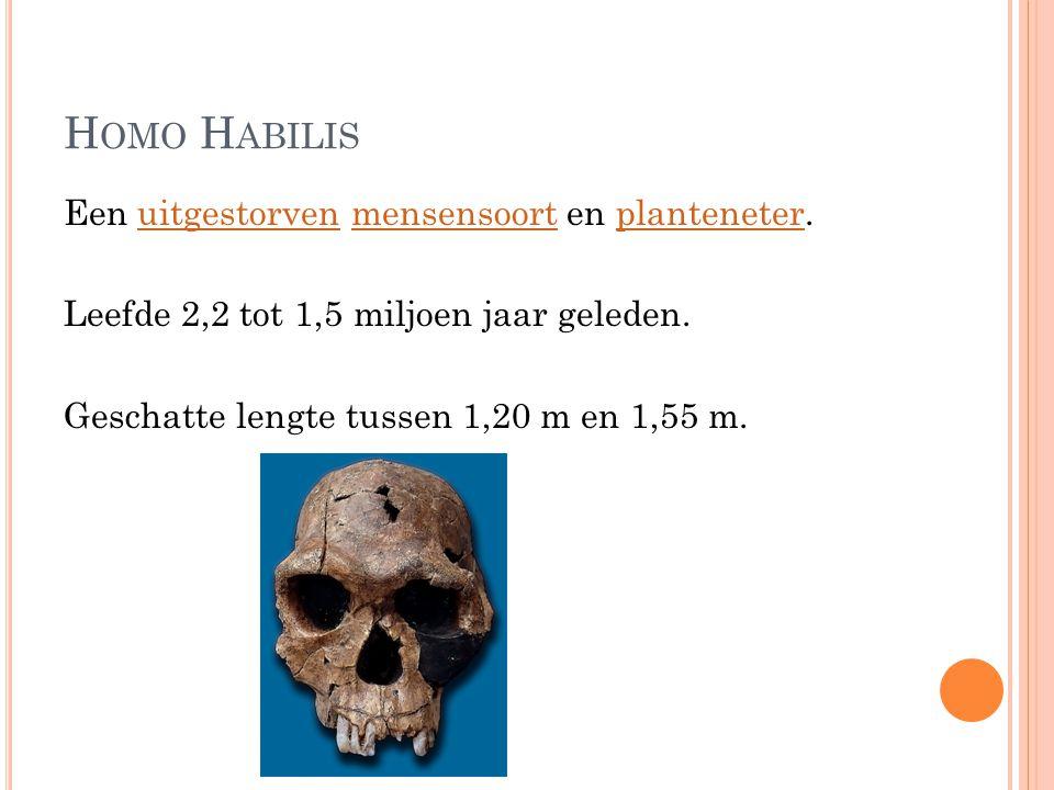 Homo Habilis Een uitgestorven mensensoort en planteneter.