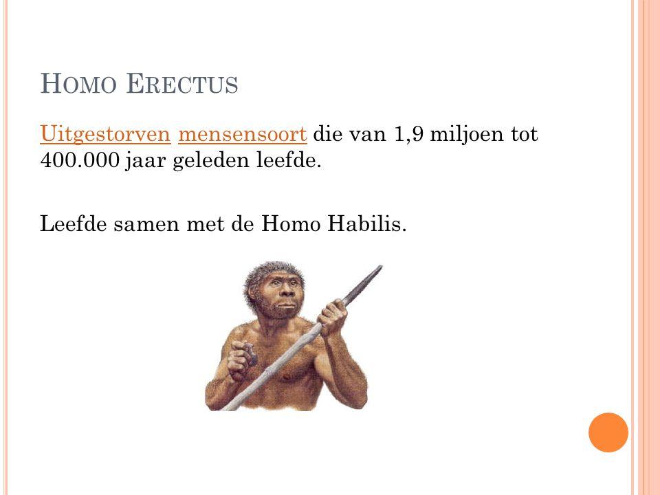 Homo Erectus Uitgestorven mensensoort die van 1,9 miljoen tot 400.000 jaar geleden leefde.