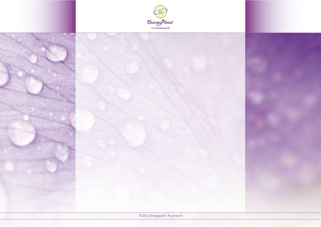 © 2011 Energyplant | Powerpoint