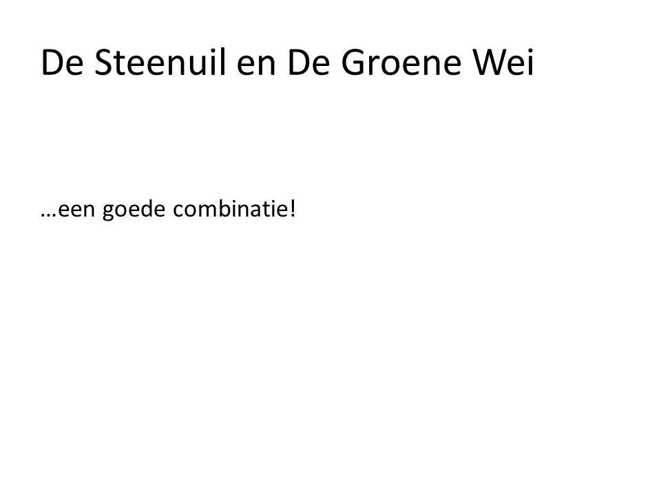 De Steenuil en De Groene Wei