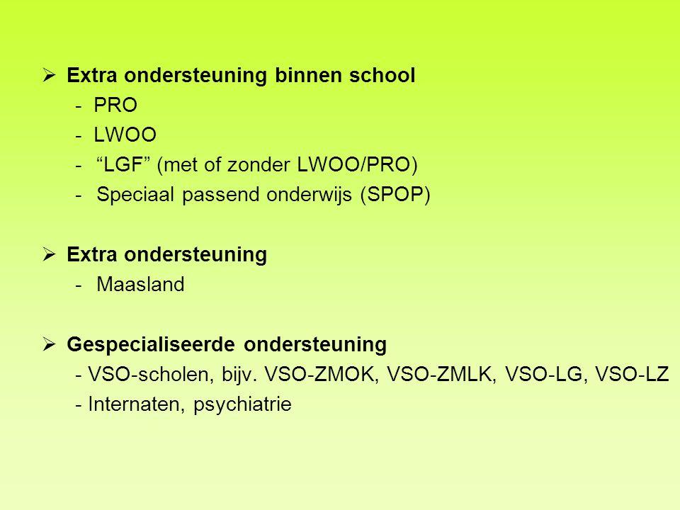 Extra ondersteuning binnen school - PRO - LWOO