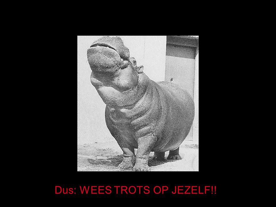Dus: WEES TROTS OP JEZELF!!