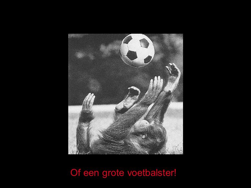 Of een grote voetbalster!
