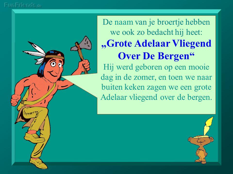 """""""Grote Adelaar Vliegend Over De Bergen"""