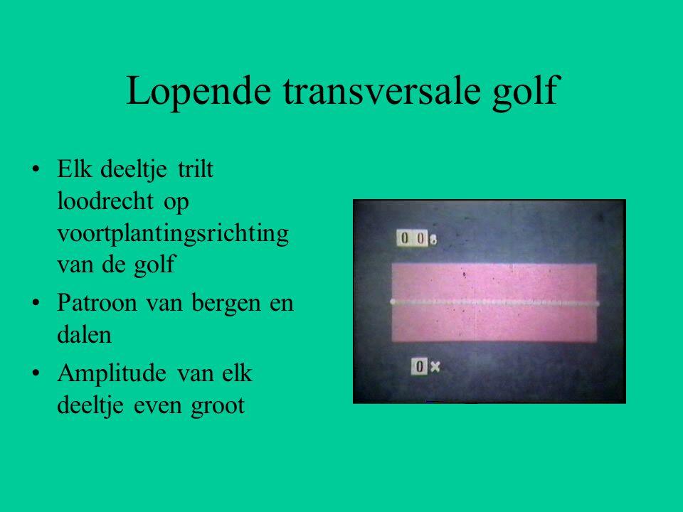 Lopende transversale golf