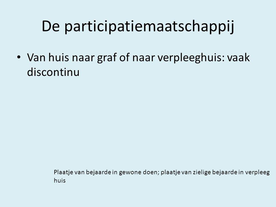 De participatiemaatschappij