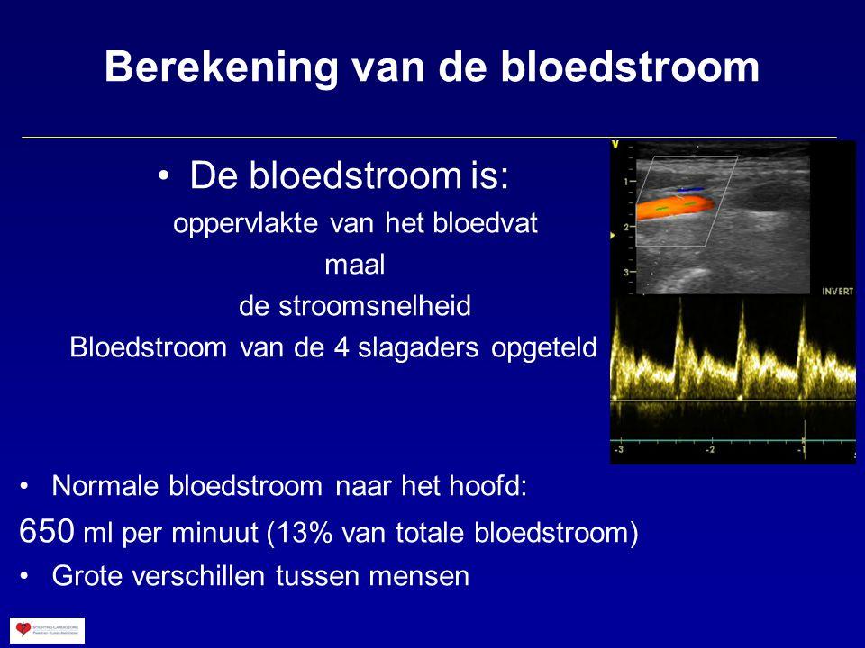 Berekening van de bloedstroom