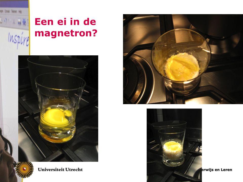 Een ei in de magnetron