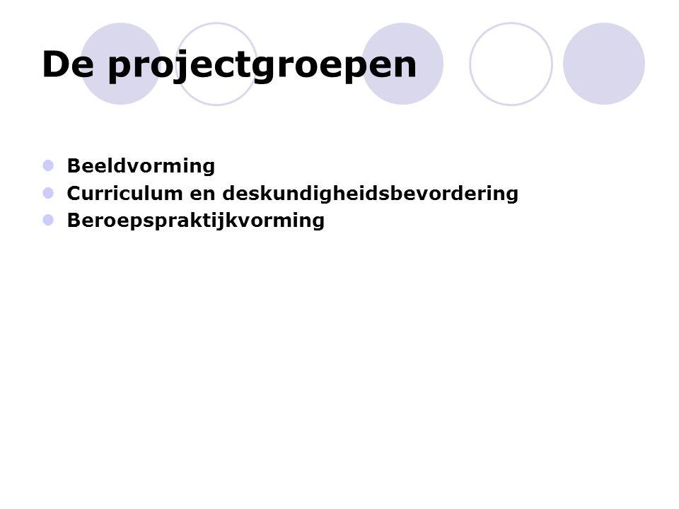 De projectgroepen Beeldvorming Curriculum en deskundigheidsbevordering