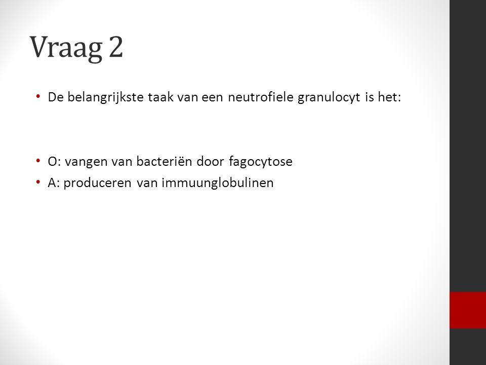 Vraag 2 De belangrijkste taak van een neutrofiele granulocyt is het: