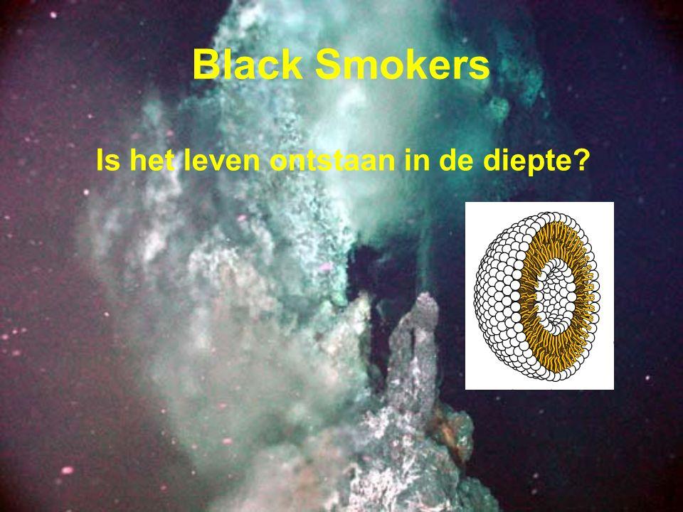 Black Smokers Is het leven ontstaan in de diepte