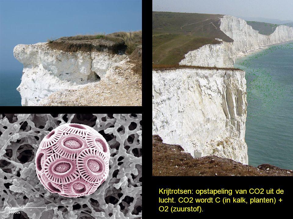Krijtrotsen: opstapeling van CO2 uit de lucht