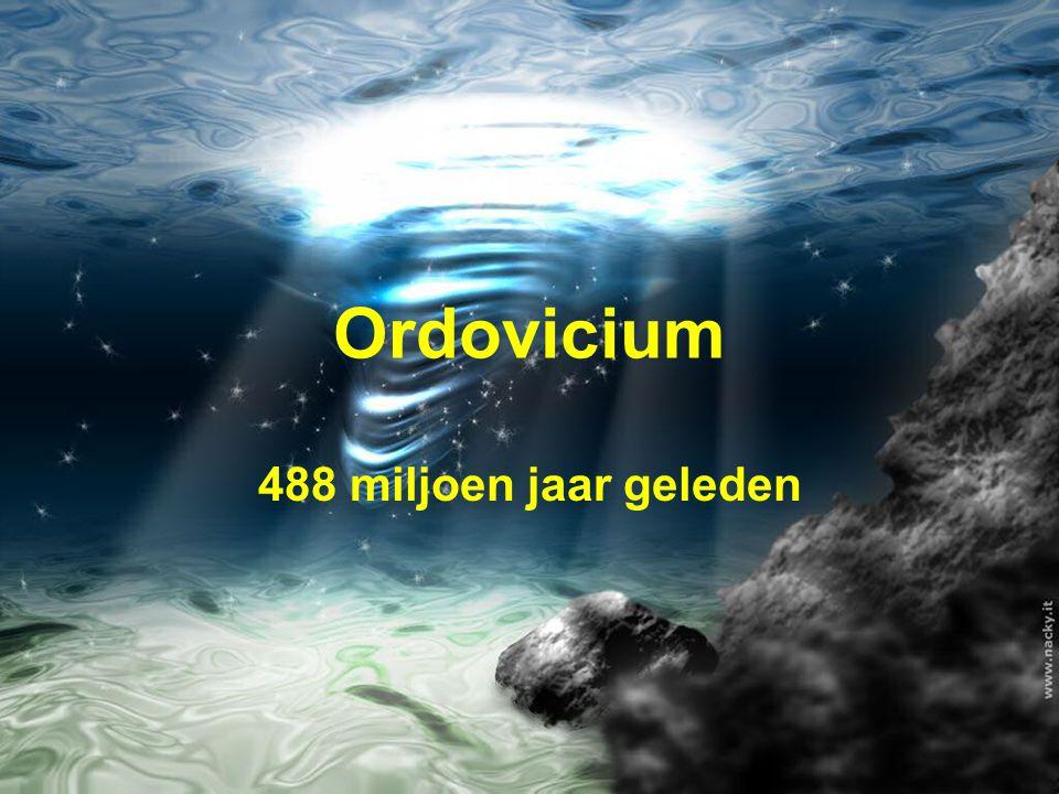 Ordovicium 488 miljoen jaar geleden