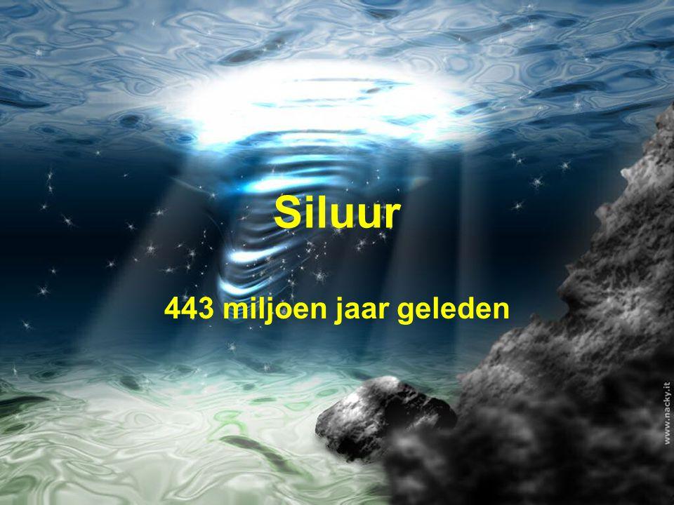 Siluur 443 miljoen jaar geleden