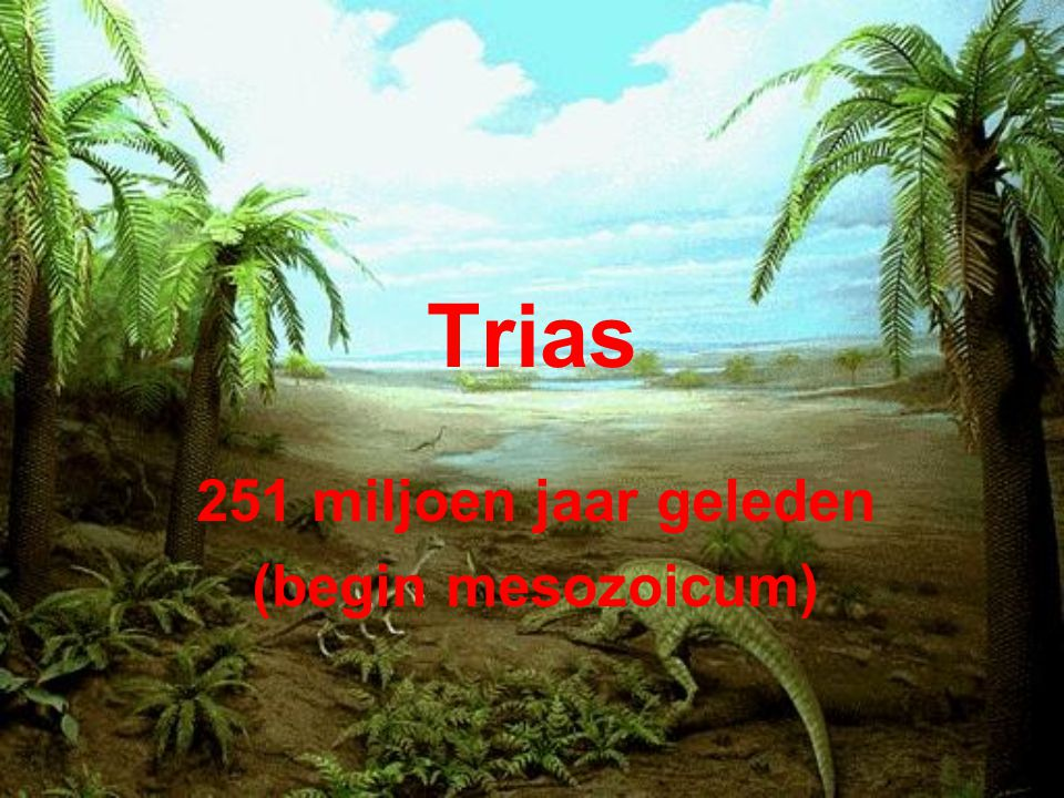 251 miljoen jaar geleden (begin mesozoicum)