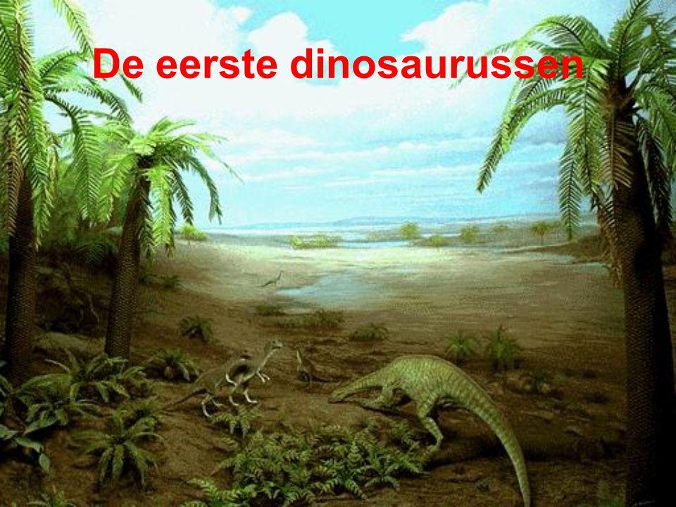 De eerste dinosaurussen