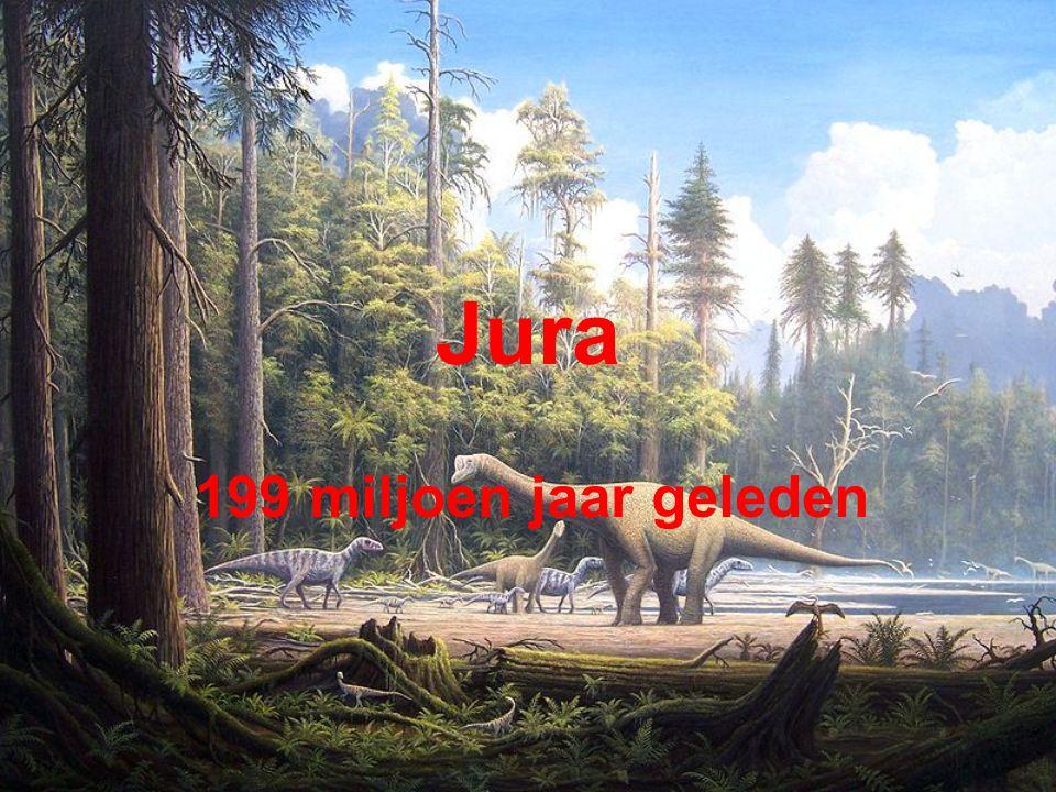 Jura 199 miljoen jaar geleden