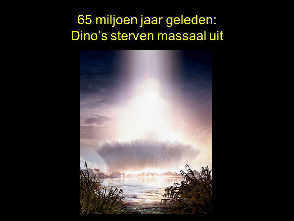65 miljoen jaar geleden: Dino's sterven massaal uit