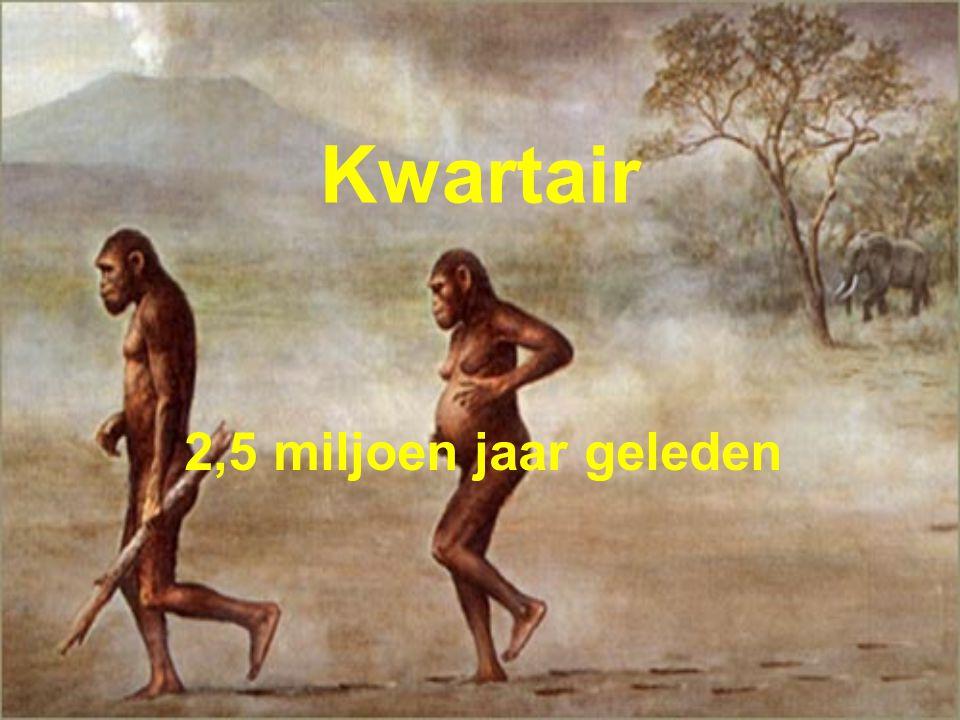 Kwartair 2,5 miljoen jaar geleden