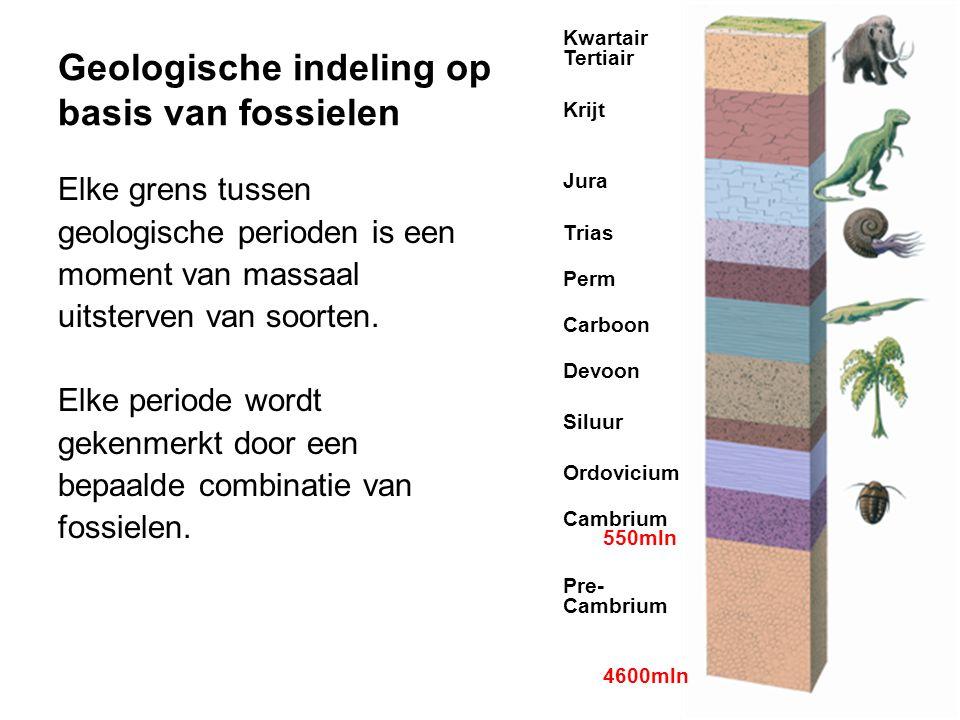 Geologische indeling op basis van fossielen