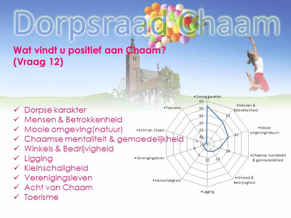Wat vindt u positief aan Chaam (Vraag 12)