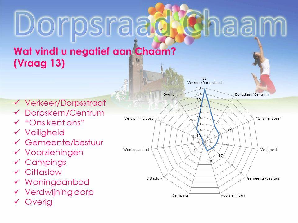 Wat vindt u negatief aan Chaam (Vraag 13)