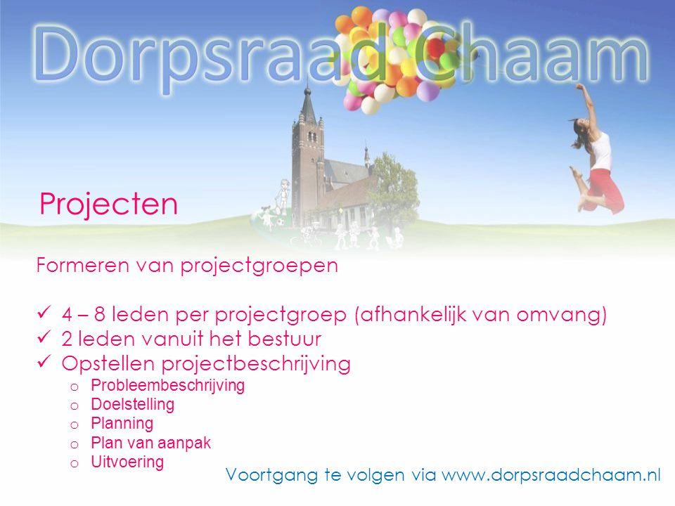 Projecten Formeren van projectgroepen