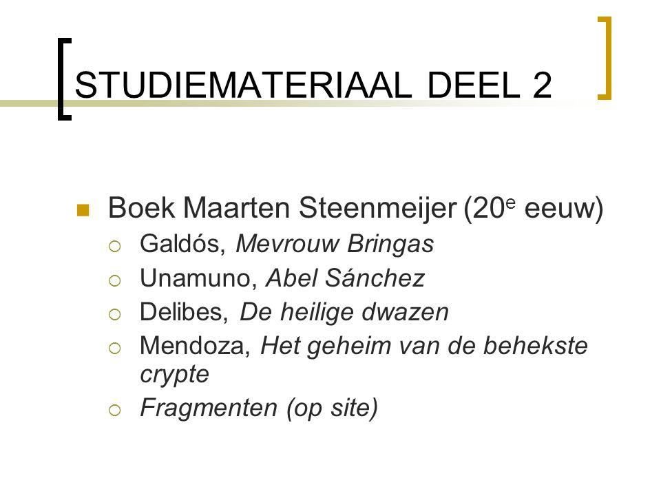 STUDIEMATERIAAL DEEL 2 Boek Maarten Steenmeijer (20e eeuw)
